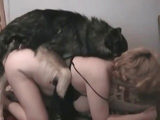 Big ass blonde and her doggy